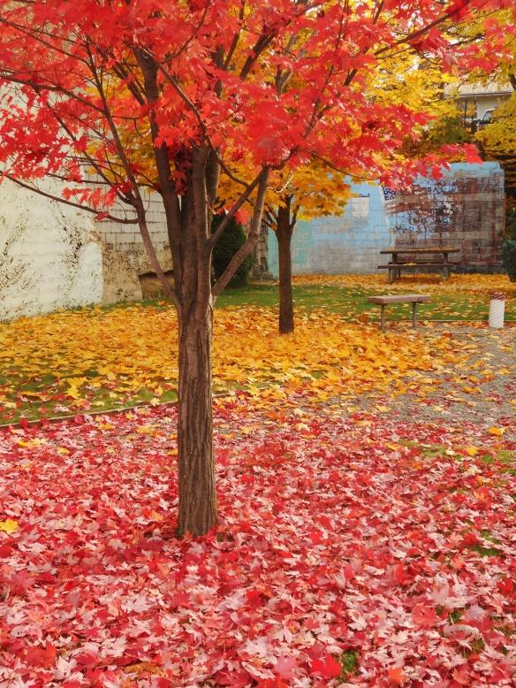 Plummer, Idaho in the Fall